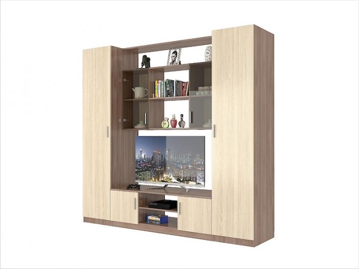 Модульная гостиная ПРОСТОР (комплект-03) 2250х520х2100мм