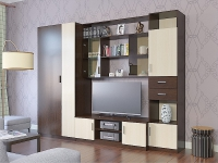 Модульная гостиная ПРОСТОР (комплект-02) 2700х520х2100мм